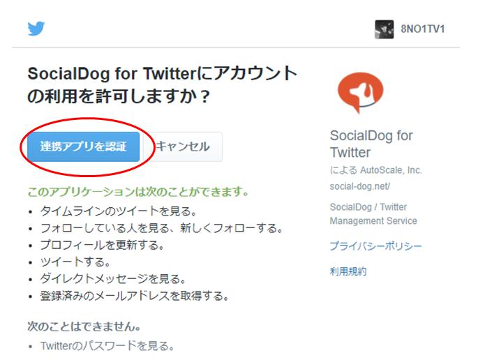 socialdog3
