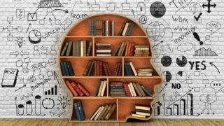 脳、思考、心理、知識、教育